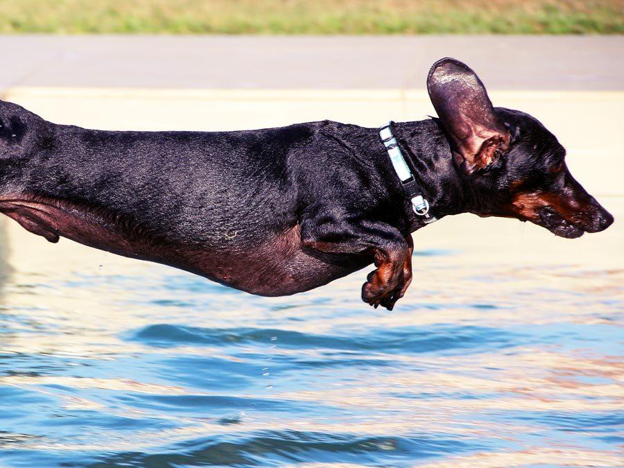 Pool academy: sauberes poolwasser aqua technix gmbh